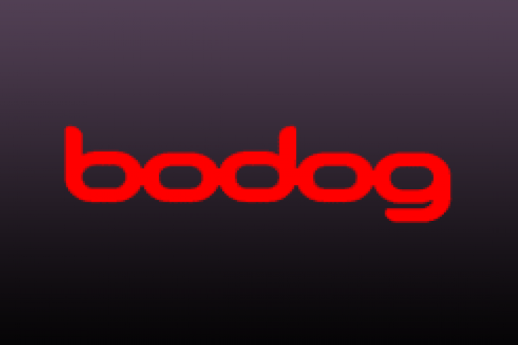 An Overview of Bodog Poker